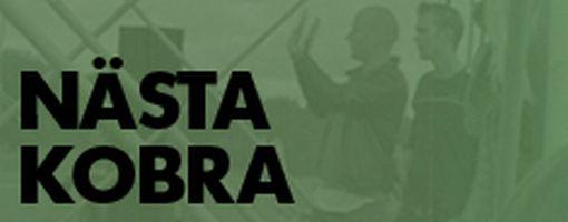 kobra-logo_510.jpg