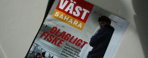 vastsahara_april2010_510.jpg
