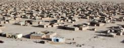 tn_refugee_camps_510.jpg
