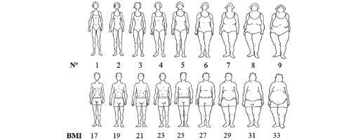 body_ideals_510.jpg